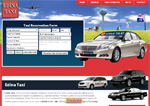 Edina Taxis.COM taxi website design limo